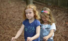 Great National Trust Days Out this Summer